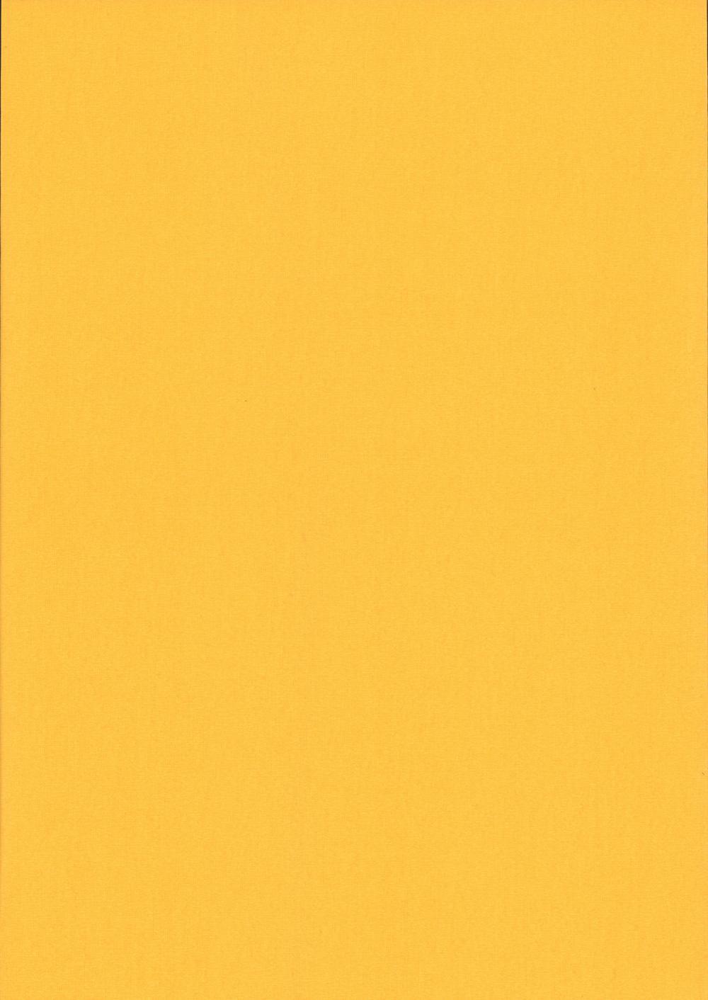 Карина-блэкаут-желтый