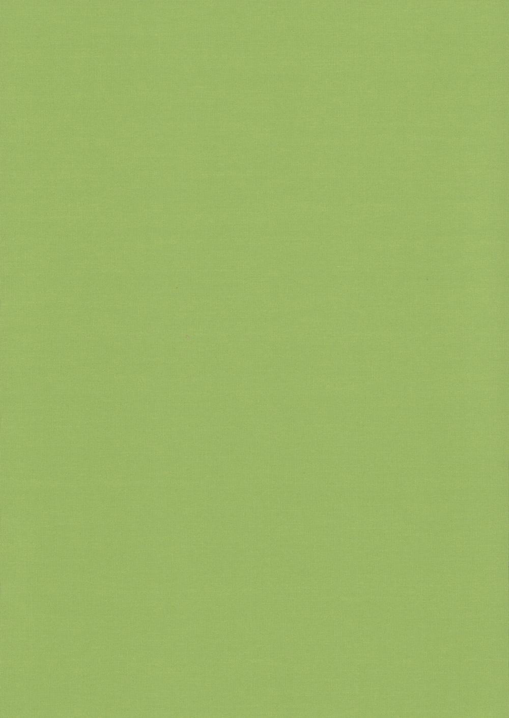 Карина-светло-зеленый