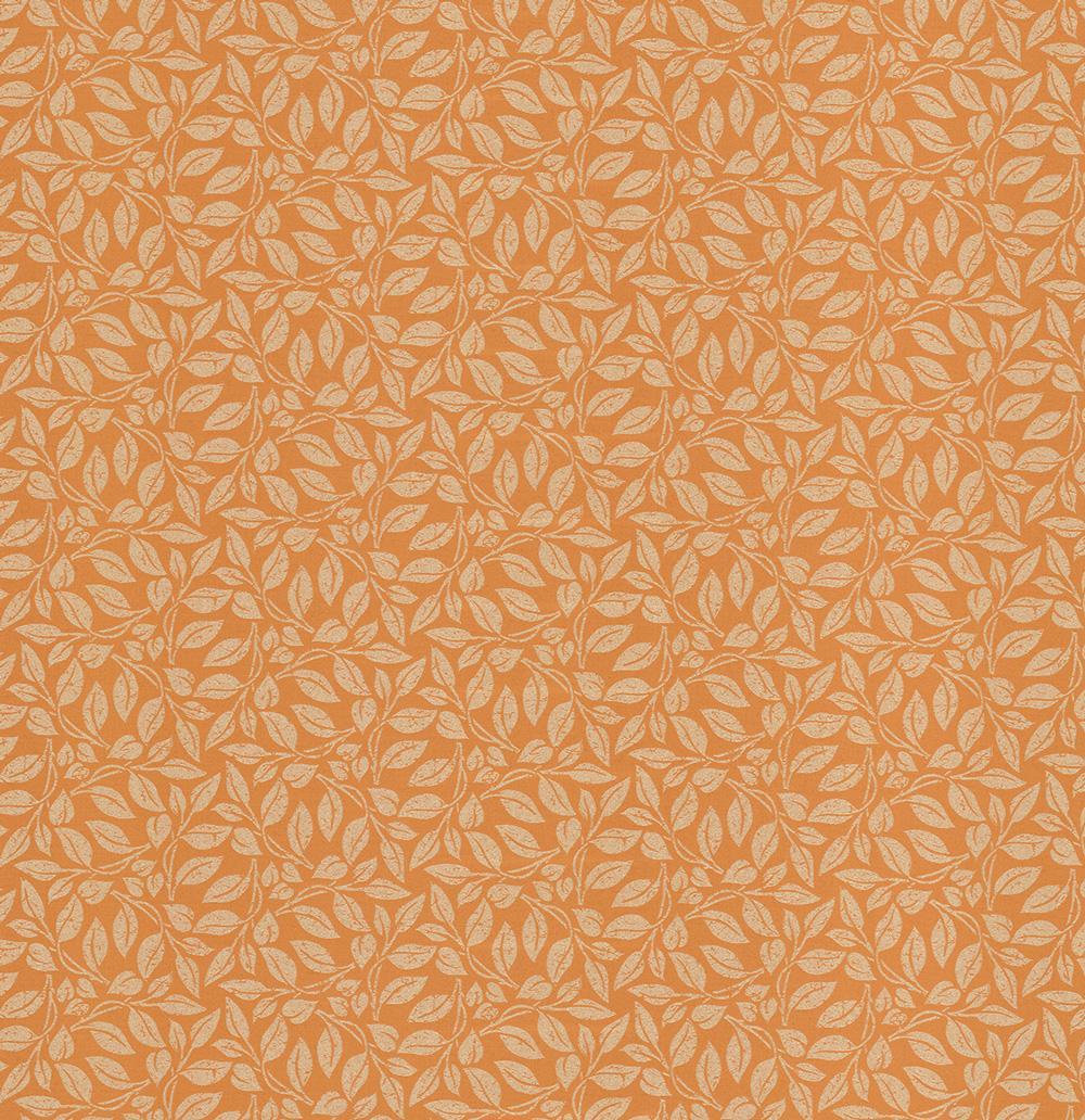 Лэйси-оранжевый