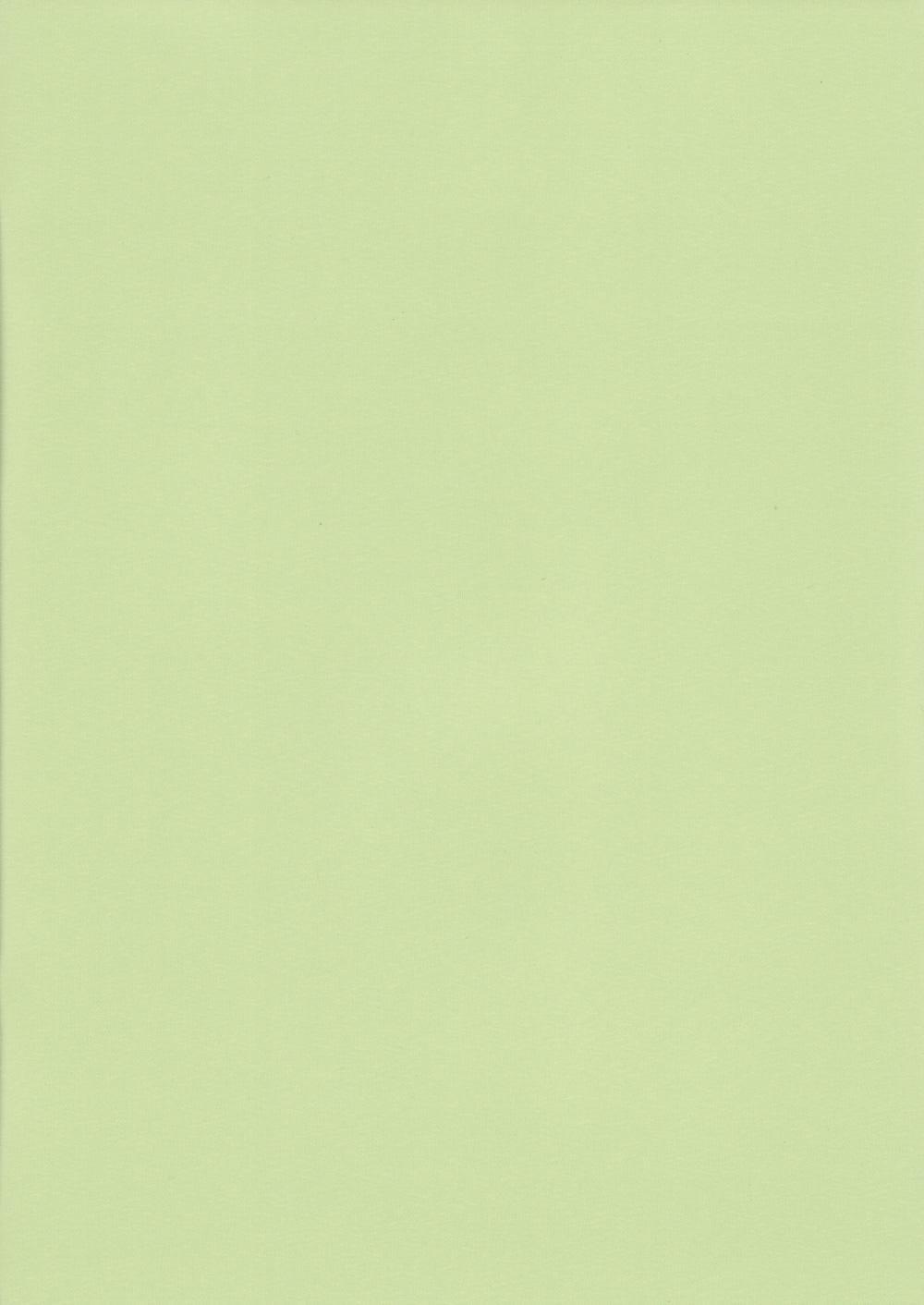 Респект-БО-зеленый