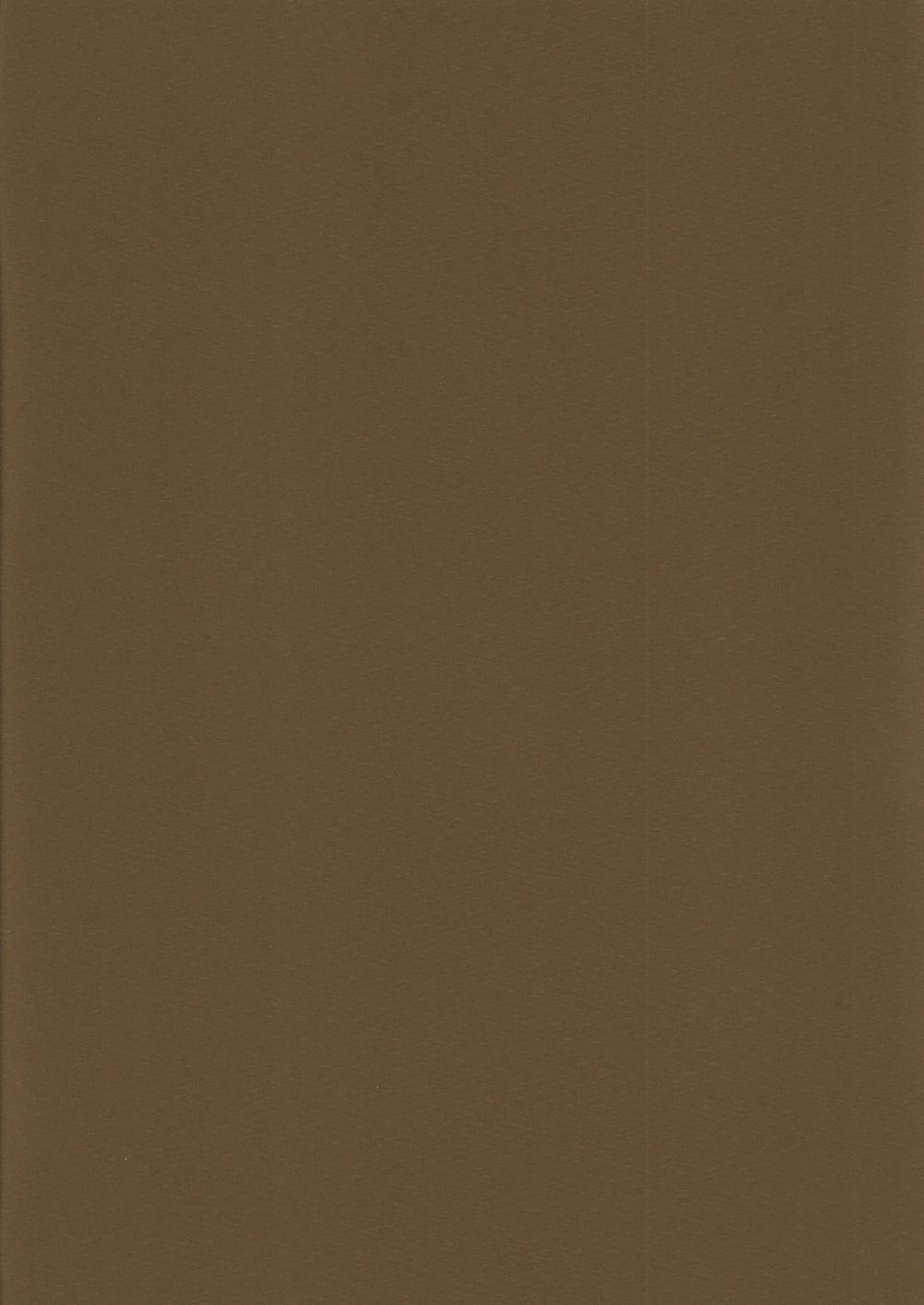 Респект-БО-коричневый