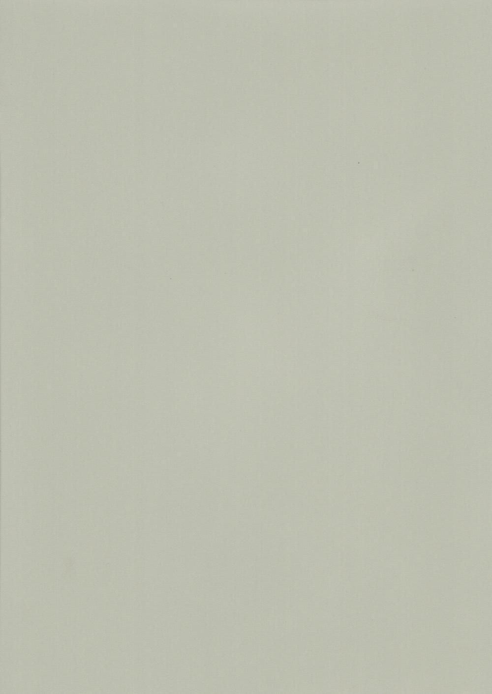 Респект-БО-светло-серый